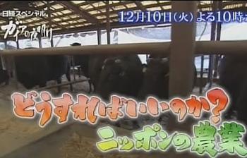 ガイアの夜明け、12月10日はどうすればいいか?ニッポンの農業.png