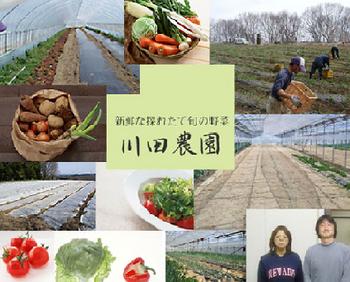 無農薬農業の川田農園紹介.png