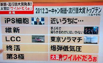 流行語大賞、2012年.png